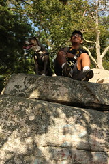 It's a Dog's Life (manalbukhari) Tags: boy boys pit pitbull dog puppies puppy doggies dogs grey brown hikings hiking sugarloaf md portait portrait