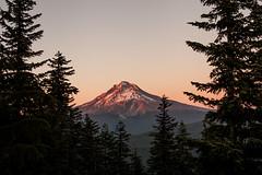 Mt. Hood (Chris Ebarb) Tags: landscape mthood oregon pacificnorthwest pnw magichour goldenhour sunset trees mountain canon 5d 5dmarkii 50mm