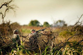 Argentina Mixed Bag Bird Hunting 43