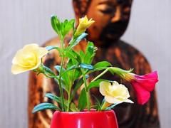 In Meditation (starmist1) Tags: buddha image flower flowers bouquet vase yellow red meditation peace compassion love open heartfelt breath breathe sitting standing walking layingdown being understanding meho daiko zen zazen