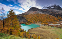 In autumn Palu Lago (Daoud Alahmad) Tags: atx116prodx d90 alps autumn clouds engadin grass green house lago lake mountain nestled nikon palu snow switzerland tokina tokinaaf1116mmf28 trees poschiavo grisons