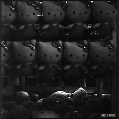 I am legion (James Mundie) Tags: jamesmundie jamesgmundie profjasmundie jimmundie mundie copyrightjamesgmundieallrightsreserved copyrightprotected blackandwhite blancetnoir noir black monochrome monochromatic bw blancoynegro biancoenero schwarzweis mediumformat squareformat 120mm 120film 6x6 film analog hasselblad500cm carlzeiss mittelformat carlzeissplanar80mm planart2880 hasselblad500 500series vsystem hasselbladvsystem hellokitty plush clawmachine arcade palaceplaylandamusementpark old orchard beach oldorchardme maine downeast