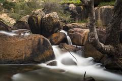 John Forrest National Park Falls (Eduardo_il_Magnifico) Tags: water waterfall creek river flow rocks trees johnforrestnationalpark nationalpark perth westernaustralia australia wet longexposure nikond750 sigma35mmf14 nisi 10stopnd polariser tripod