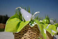 SOMMAR 2015, detail (dididumm) Tags: summer apple pear green white sunshine decorations deko dekoration sonnenschein weiss grn birne apfel sommer sommar2015 ikea
