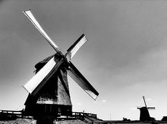 Windmills, Holland (David_Blair) Tags: windmill windmills netherlands holland bw blackandwhite landscape clouds clearsky