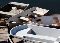 Perkins Cove, Ogunquit, Maine (Jacques Trempe 2,090K hits - Merci-Thanks) Tags: boat cove maine perkins ogunquit