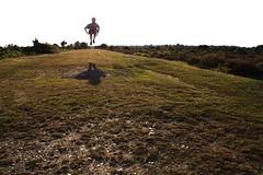 (eeviko) Tags: uk greatbritain shadow summer england man male nature grass landscape jump unitedkingdom britain d bushes newforest newforestnationalpark 1962012
