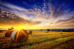 Erntedank (Wolfgang Staudt) Tags: sunrise nebel natur earlymorning sunrays landschaft sonnenaufgang morgen sonnenstrahlen erntedank stroh saarland romantik morgenstimmung ackerbau man