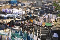 Mahalaxmi Dhobi Ghat, Mumbai (Malc ) Tags: india photo photos streetphotography laundry bombay clothesline mumbai malc washing ghat mahalaxmi dhobi laundries dhobighat photosof clotheswashing mahalaxmidhobighat malcc dhobighatmumbai dhobighatinindia dhobi