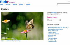 Papilio machaon on Explore front page (myu-myu) Tags: explore explorefrontpage