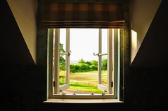 look out from within (denn0t) Tags: trees house building window look grass out scenery flat scenic greenery opening serene glazing dennisteohframingasubjectassignment