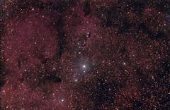 IC 1396 in Cepheus (the top half) 22 August 2012 (BudgetAstro) Tags: nikond70 nebula astrophotography astronomy dss cepheus ic1396 elephantstrunknebula deepskystacker Astrometrydotnet:status=solved ic1396a Astrometrydotnet:version=14400 Astrometrydotnet:id=alpha20120853546635