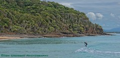 Lone winter surfer at Noosa Heads, Noosa, Queensland, Australia.2012 (PROSECMAN) Tags: surfer australia queensland noosa noosaheads lonesurfer noosaqueensland tomcrossanphotography noosaheadsqueensland noosaheadssurfing