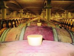 Pichon Lalande barrel cellars