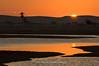 siwa lake 3 (Ramy Francis) Tags: africa sunset sea heritage sahara nature night landscape sand desert northafrica dusk african dune scenic egypt culture tourist palm environment wilderness touristattraction westerndesert greatsandsea libyandesert