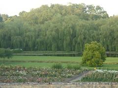 Lafite Rothschild grounds
