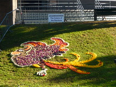 The Colors of the Rainbow (Stefan Peerboom) Tags: mosaic mosaics 2012 mozak fruitcorso mazaken