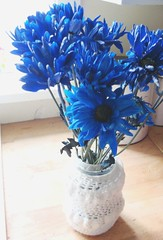 Blue Daisies (itchinstitchin) Tags: flowers blue white daisies petals crochet gift surprise bunch jar simple royalblue grannychic