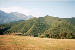 the path up a wooded hill (Paul..Andrews) Tags: fuji fujifilm picosdeeuropa disposablemountainswoodshillslandscapenaturespain