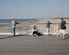 * (Cees Willems) Tags: sea summer people sun color colour beach netherlands pier sand scheveningen seagull horizon dune denhaag northsea leisure thehague 35l ceeswillems 5dm2