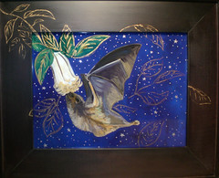 Bat Night Magic (Betanzos Designs) Tags: stars nocturnal wildlife bat reverseglasspainting