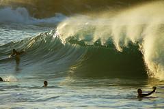 DSC09437 (palmtreeman) Tags: sea seascape beach water weather birds surf waves wave surfing beaches wedge bodyboarding skimming bodysurfing