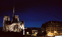 Notre Dame by night (Emanuela Marino) Tags: paris france night lights notre dame francia notturno parig
