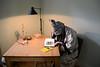 Wunderland (Michael Ecke) Tags: lewiscarrol franzkafka verwandlung wonderland rabbit colour conejo metamorfosis color interior bedroom dormitorio