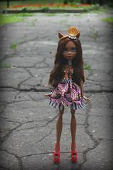 image1 (Cleo6666) Tags: mattel monsterhigh monster high clawdeen clawdeen17 ooak custom repaint doll