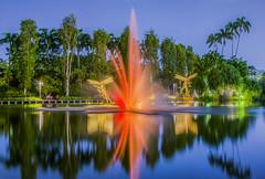 Watercolour (Paul's Picx) Tags: singapore fountain water colour color gardensbythebay asia garden dragonfly trees marinabay hotel gardens bay