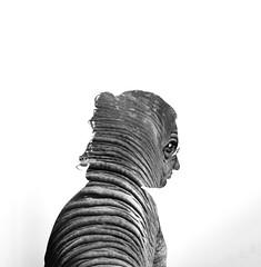(M A T C H S) Tags: elephant portrait doubleexposure animalface elephantman mattmatches double exposure black white matt matches