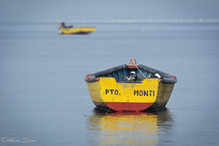 Puerto Montt Postal Shoot (AllanS.) Tags: puerto montt postal shoot ship barco bote mar sea water agua chile gaviota seagull nature naturaleza