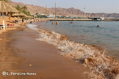 The Beach of Aqaba, Red Sea, Jordan (Sebastiao P Nunes) Tags: praia playa beach jordan jordania aqaba redsea marvermelho marrojo canoneos70d snunes spnunes spereiranunes mar sea oceano ocean