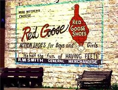 Pic 1- Melvern Wall art (katie kraxberger) Tags: old vinage wallart goose mothergoose vintageshoes redgoose fifties oldtown
