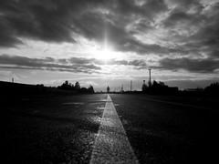 Road of sun (nIx0iD) Tags: girl woman human road sun go day outumn trees bw
