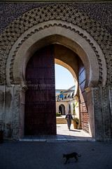 MAROCCO_1188_0816@ANDREAFEDERICIPHOTO (Andrea Federici) Tags: marocco morocco travel travelling africa andreafedericiphoto