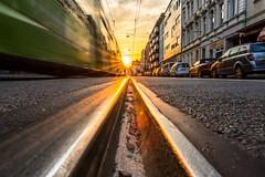 Sunset Tram (Moritz Padberg) Tags: tram traffic train traintrack traintracks sunset sun dsseldorf duesseldorf dusseldorf