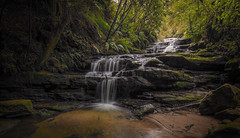 RGML6903 Leura Cascades lower (Rmonty119) Tags: canon5dlll 1124mmf4l leura bluemountaint lightroom water waterfall river travel outdoors cascades