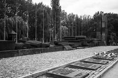 20130916Auswitch II Birkenau11 (J.A.B.1985) Tags: auswitch poland polonia iiww worldwar iigm guerramundial holocaust holocausto soah