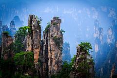 Zhangjiajie (**James Lee**) Tags: zhangjiajie hunan yongding cili sangzhi wulingyuan unesco world heritage aaaaa scenic china national tourism administration karst park tree cliff rocks
