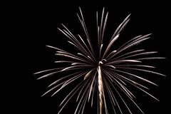 _MG_1204 (sdferrell) Tags: dmt fireworks ny