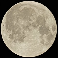 Harvest Moon (Sarah and Simon Fisher) Tags: moon moonwatch lunar lunarseas craters full fullmoon harvest naturalsatellite telescope maksutov 127mm canon 600d bromsgrove worcestershire uk clear sky astrophotography astronomy