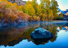 Autumn in Rush Creek, Eastern Sierra (Basak Prince Photography) Tags: concepts fall geographicfeatures inyo inyonf leevining monocounty october waterfall weatherandseasons aqua aspens background blue boulder brook california crash creek current drop easternsierra energy fallcolors falling flood flow flowing fog graceful hydro landscapes liquid mist monolake motion mountain movement natural nature outdoors park pattern power pure rapids reflection river rock rushcreek rushing smooth splash spray stone stream streaming sunrise texture turbulent water wave wet white whitewater willows yellow zen