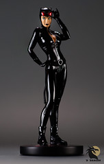 classic cat (desertdragon) Tags: adamhughes catwoman dccovergirls statue