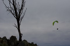 Bruce and Tree (overflow50) Tags: canberra paragliding paraglider spring springhill sky clouds