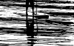 black and white (moemay9) Tags: sunset water up reflections stand board paddle nikkor vr d90