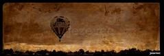 2012-08-11 [177] Ballooning into the sunrise (Badger 23 / jezevec) Tags: state statefair ballon balloon balo indiana fair hotairballoon ballooning luchtballon globo 2012 ballong balonismo balon indianastatefair bales   jezevec balloonist   baln aerostato balionas  hupall   balnek aerstato aerostats   badger23  gaisabalons   balonowy lggmb    pelembungan   kuumailmapalloarostat