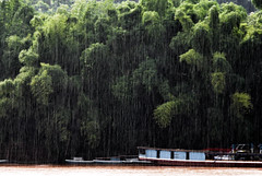 when it rains, it pours. (Pedro Fandiño) Tags: trees storm water rain rio água forest river shower boat rainforest asia barco chuva jungle monsoon tropical southeast laos heavy raining floresta tropics mekong luang prabang ásia sudeste monções