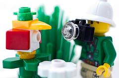 What do you do for a living? (EvasSvammel) Tags: toys lego scarecrow yrke fågelskrämma fotosondag fs120826