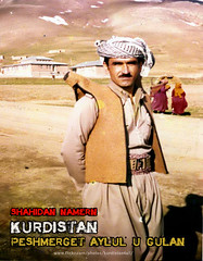 peshmergekan پێشمه رگه کان (Kurdistan Photo كوردستان) Tags: turkey democracy iran iraq baghdad syria loves russian kurdistan koerdistan العراق سوريا irak kurdish barzani kurd kurds kurdi newroz ايران barzan kurden hewler تركيا kurdistani کوردستان kurdiskaa kuristani كردستان kurdistan4ever karkuk kürdistan كوردستان kurdistan4allكوردستان نه‌ورۆز کردی kurdene kurdistan2008 kurdistán kurdistan2009 پێشمەرگە الأنفال‎ ئەیلولی kurdîstan kurdpic